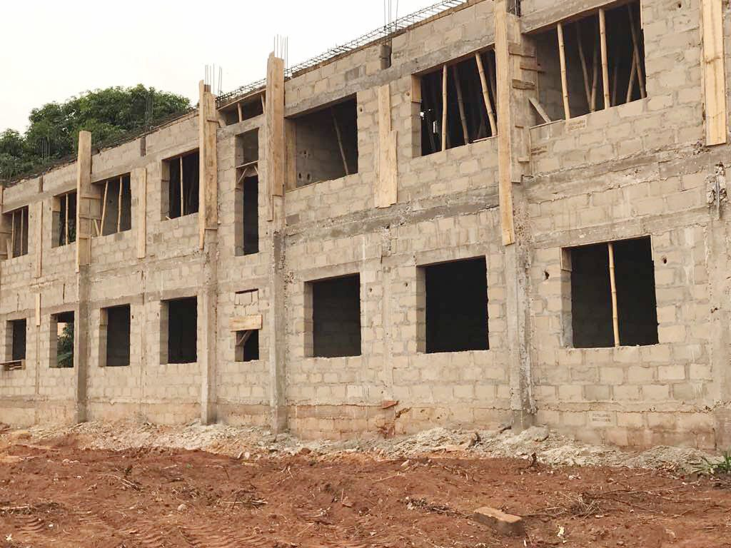 Dr. Okey Anueyiagu Foundation's New Elementary School Project